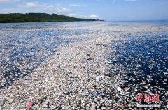以限制一次性使用塑料制品